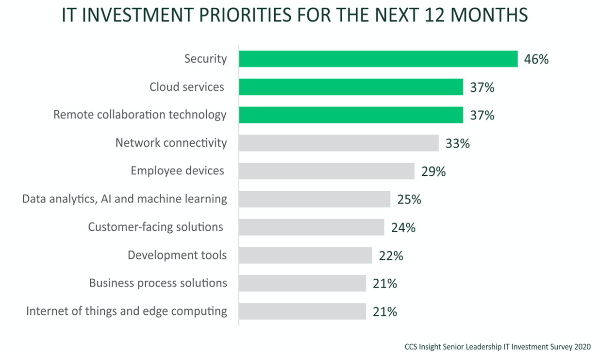 IT investment priorities for the next 12 months